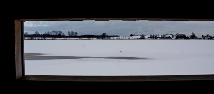 Obermooser Teich