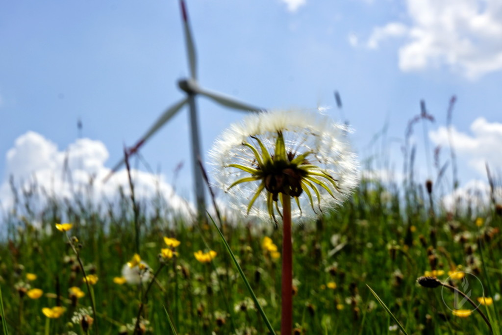 Windenergiepark Vogelsberg