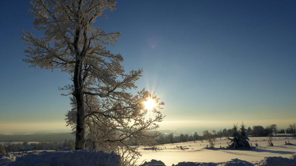 schneewandern-vogelsberg-1