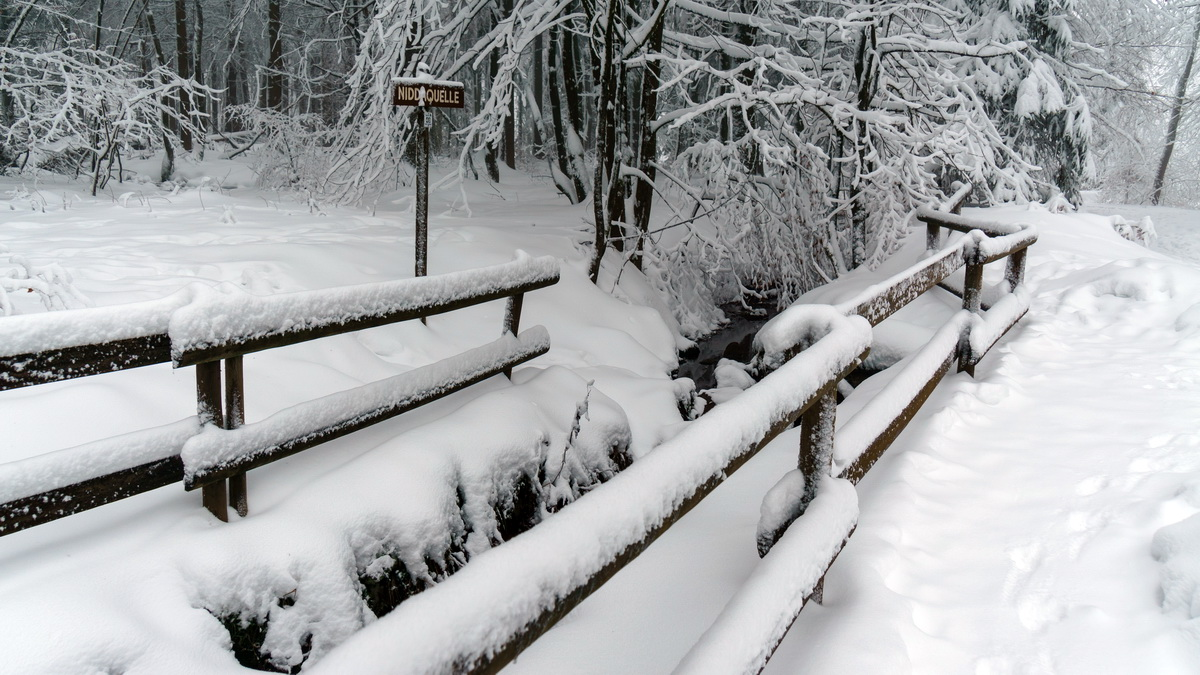 Winterwandern-Höhenrundweg-Niddaquelle - Vogelsberg-Blog