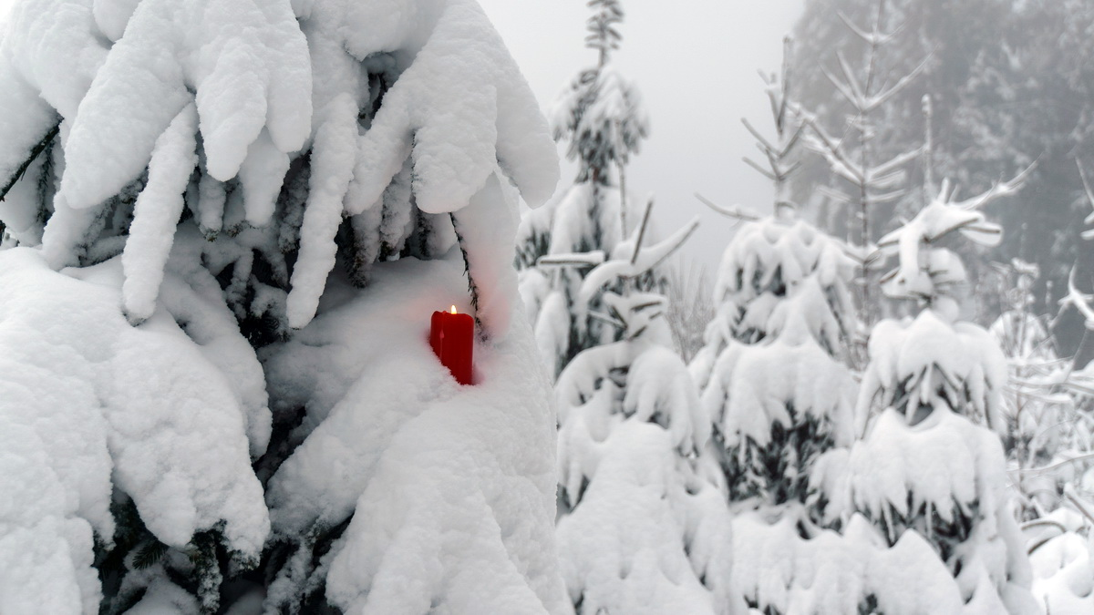 Winterwandern-Höhenrundweg - Vogelsberg-Blog