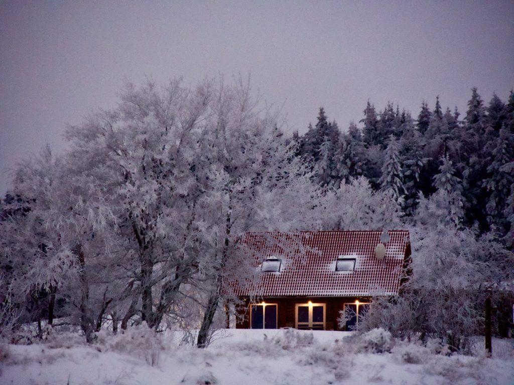 Winter auf der Herchenhainer Höhe- 2020 -02