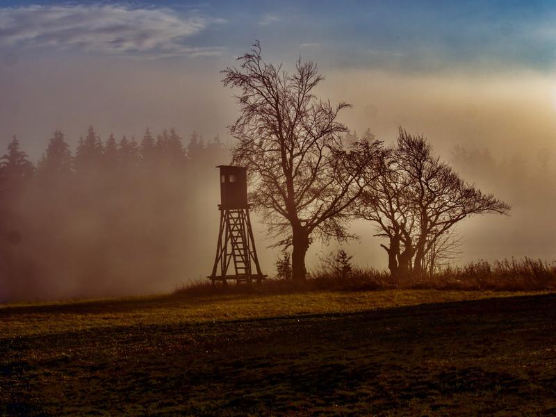 Nebel-Vogelsbergliebe.6