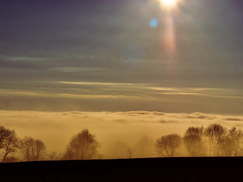 Nebel-Vogelsbergliebe.7
