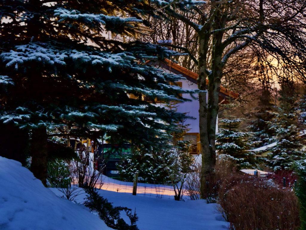 Vogelsberg-blog.de - Winter-Libelingsbilder 2021
