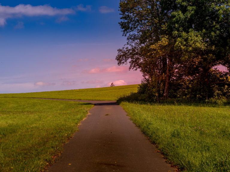Sommerlicher Vogelsberg - Vogelsbergliebe im August